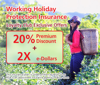 Working Holiday Protection Insurance Promotion